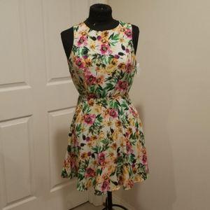 NWT Floral Spring Dress